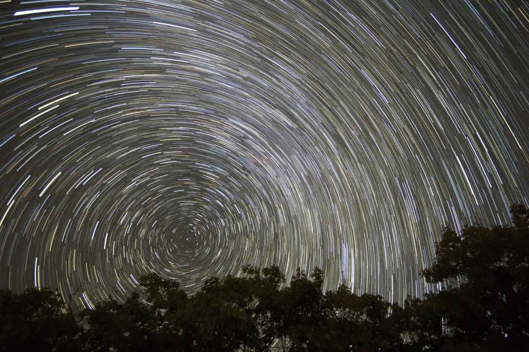 timelapse photo of trees with background of star