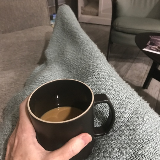 Snug inside with blanket and hot coffee!